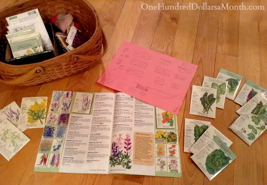 Monthly Garden Chores for January – East Coast Edition