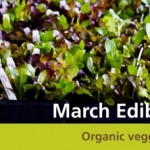 Seattle Tilth Spring Plant Sale and Educational Classes