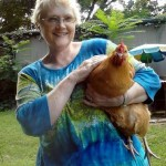 Chicken Coop Photos from Winston-Salem, North Carolina