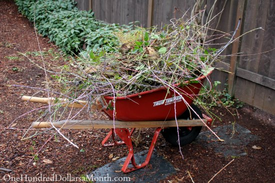 wheelbarrow weeds