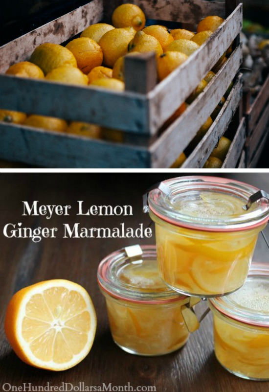 Meyer Lemon-Ginger Marmalade Recipe - One Hundred Dollars ...
