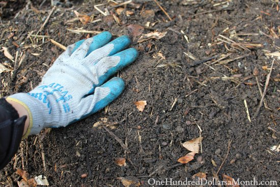 Composting Chicken Manure