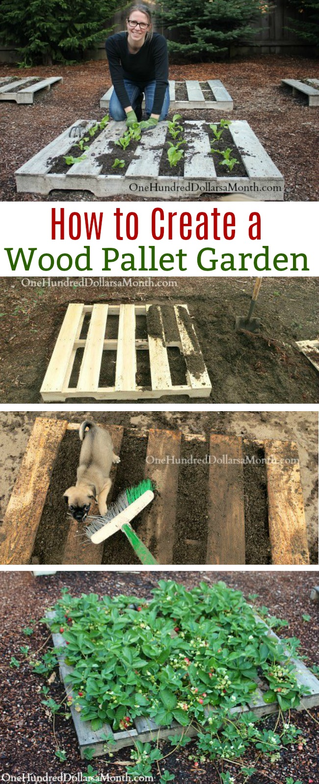 Pallet Gardening – How to Create a Wood Pallet Garden
