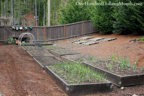 wood pallet garden raised garden beds