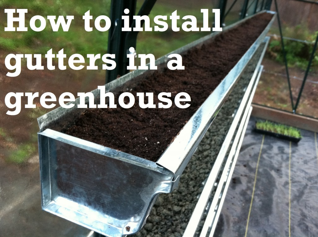 Pallet Gardening – Lettuce and Strawberries