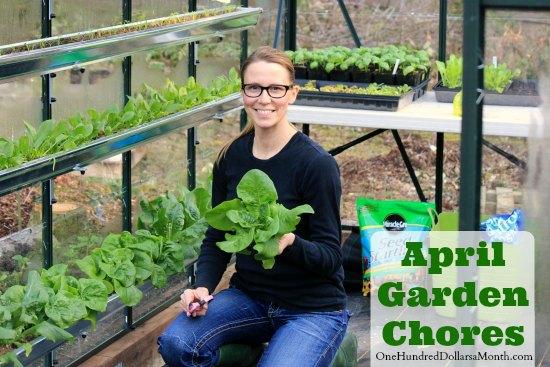 Monthly Garden Chores – April