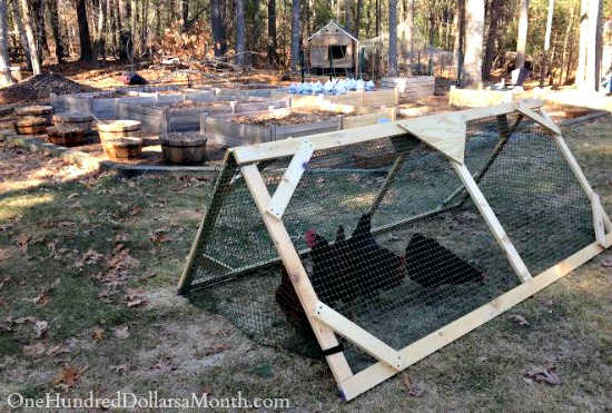Monthly Garden Chores for April – East Coast Edition