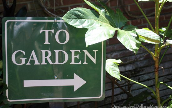 Filoli Gardens and Mansion Tour