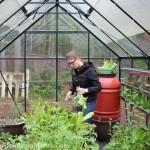 Foraging for Dinner in the Lettuce Jungle