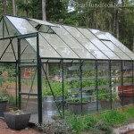 pollen on greenhouse