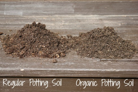The planting experiment organic vs non organic soil one for Topsoil vs potting soil