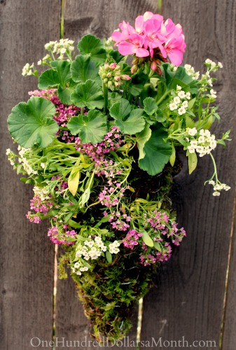 Cone Shaped Hanging Basket