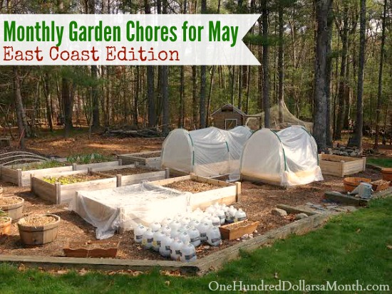 Monthly Garden Chores for May – East Coast Edition