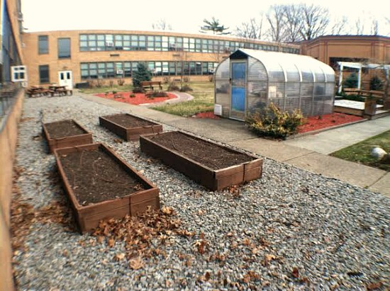Does Your School Have a Garden?