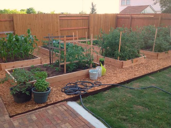 Garden Beds Along Fence Small Spaces
