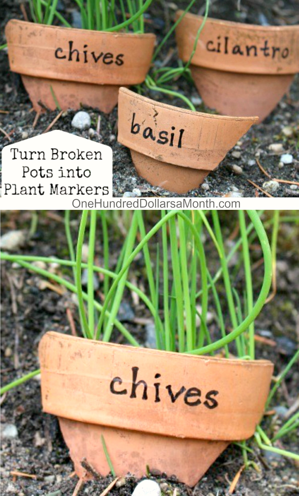 DIY Plant Markers From Broken Pots
