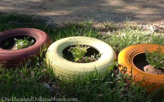 Mavis Mail – April From Louisiana Sends in Her Garden Photos