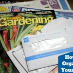 Organization Tips – How to Organize Your Mail