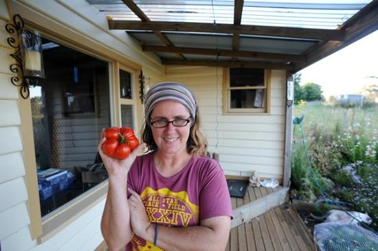 giant tomato from australia