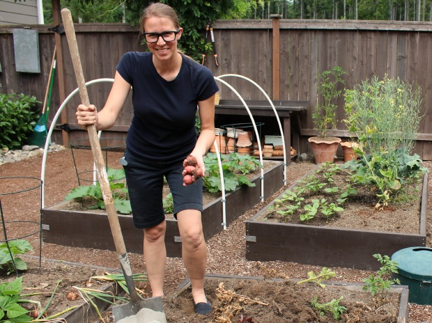 Planting Thanksgiving Plants in July {Yes, I'm Serious!}
