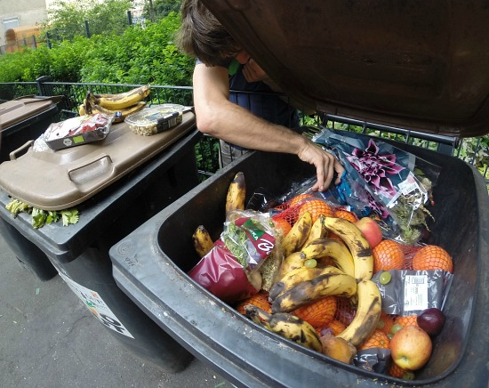 Dumpster Driving Across Europe to Protest Food Waste