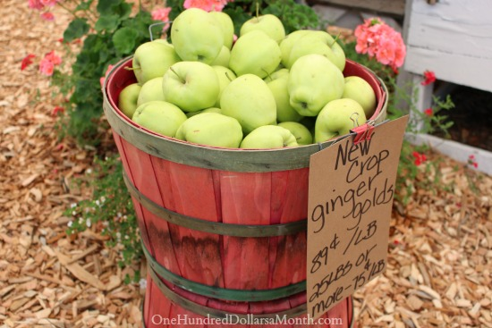 ginger gold apples