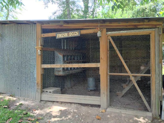 Ginger From Mississippi Sends in Her Garden and Chicken Pictures