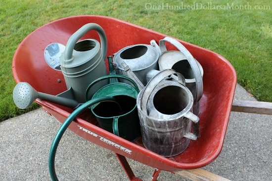 old watering cans red wheelbarrow