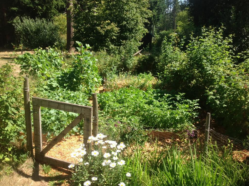 Mavis Mail – Heidi From Vancouver Island Sends in Garden Photos