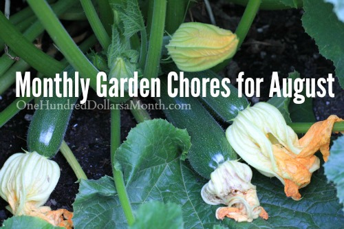 Monthly Garden Chores for August