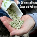 The Difference Between Organic Seeds and Heirloom Seeds