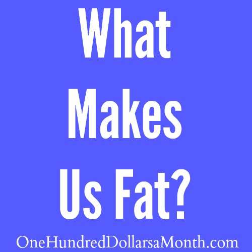What Makes Us Fat?