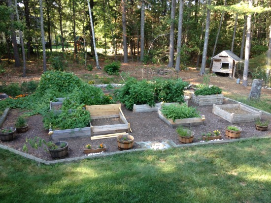 Monthly Garden Chores for September- East Coast Edition