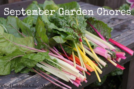Monthly Garden Chores for September