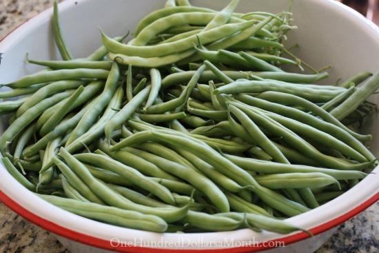 bowl of fresh green beans