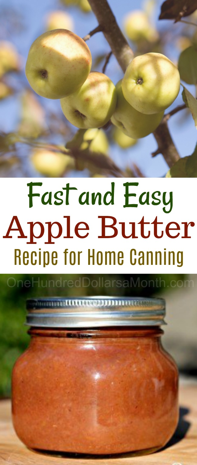 Canning 101 – Crock Pot Apple Butter Recipe