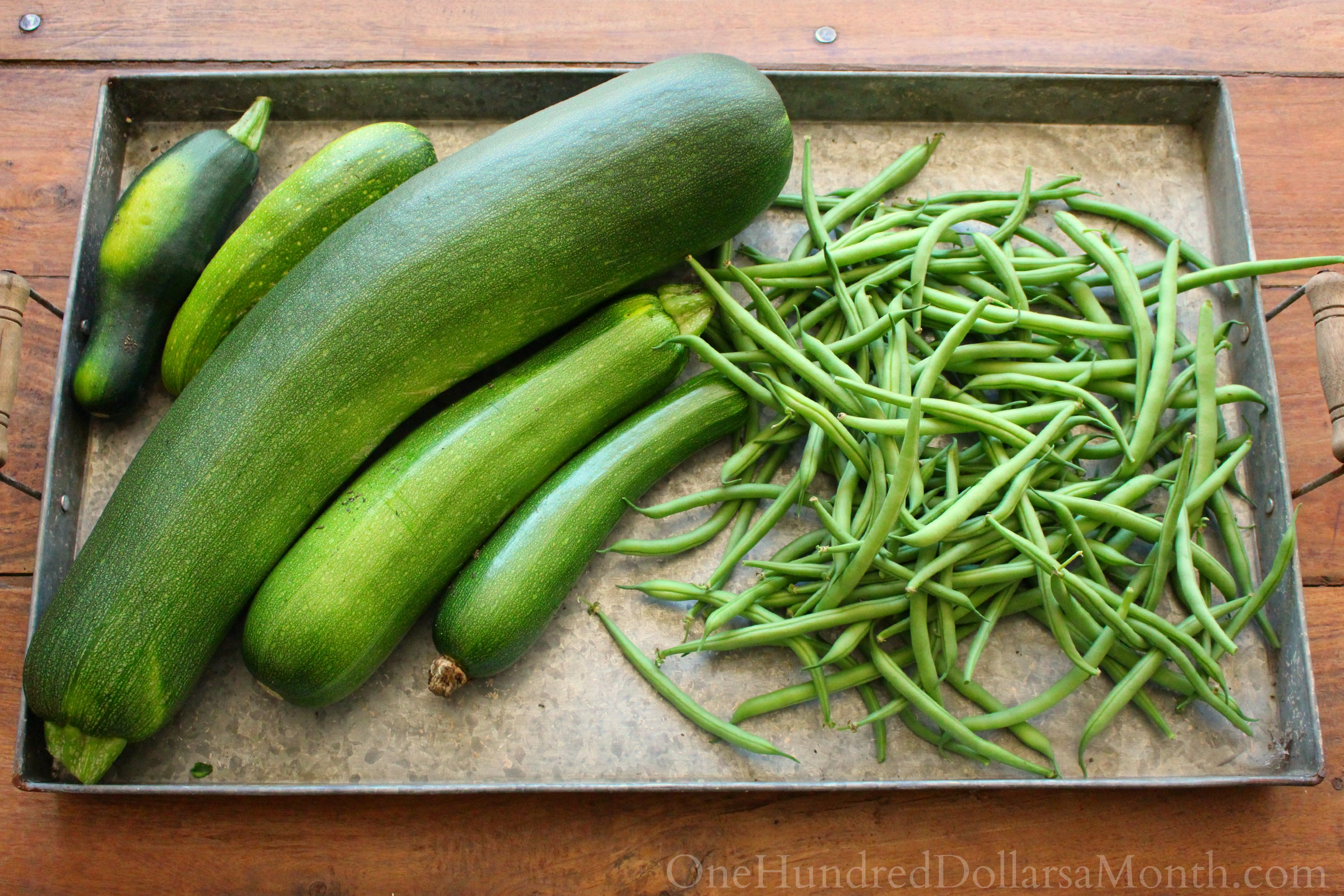 What Am I Suppose to do With All This Zucchini?
