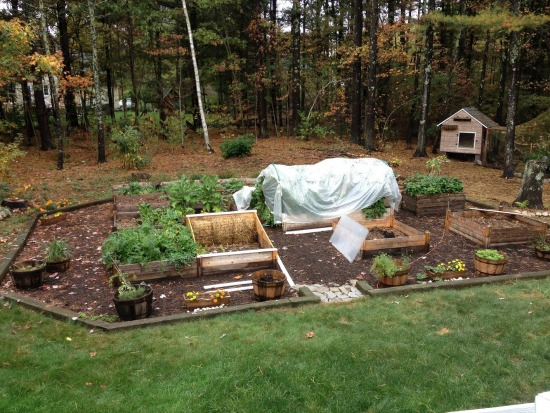 Monthly Garden Chores for October- East Coast Edition