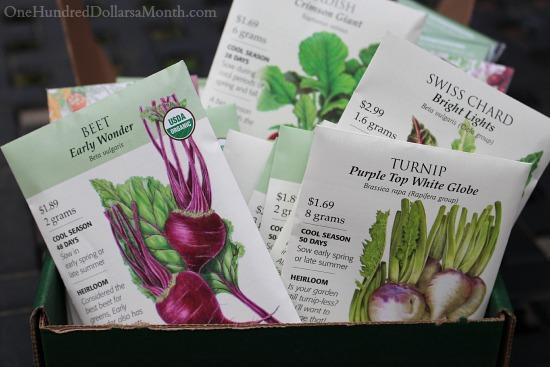 Mavis Garden Blog – Pruning Rhododendrons, Planting Carrots and Planning My Winter Garden