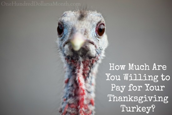 How Much Are You Willing to Pay for Your Thanksgiving Turkey?