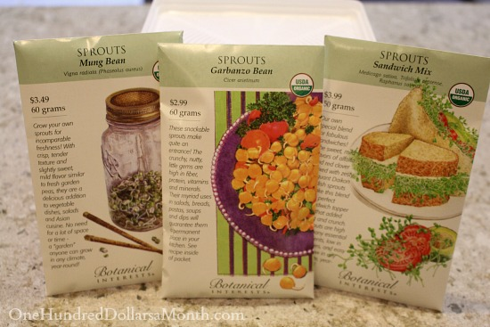 Indoor Gardening – Seeds to Sprouts in 5 Days or Less