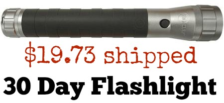 30 day flashlight