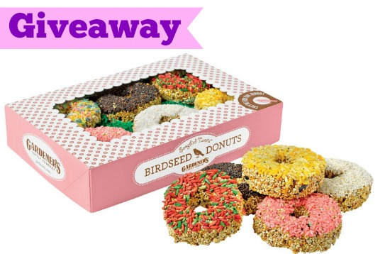 Giveaway: Songbird Tweets Bird Seed Donuts