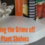 Easy Kitchen Tip – Keeping the Grime off of Plant Shelves