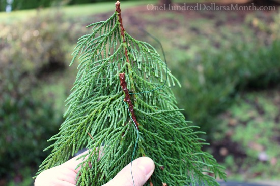 Make a Cedar Christmas Garland