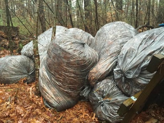 bags of fall leaves