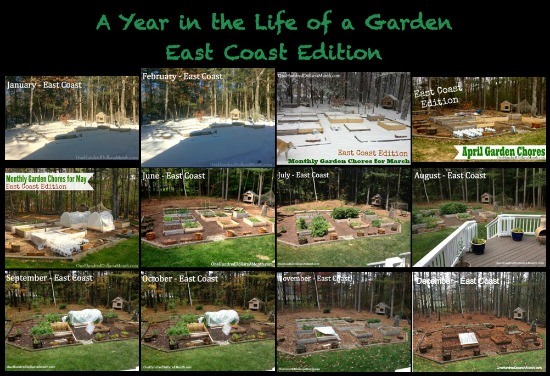 east coast garden pictures