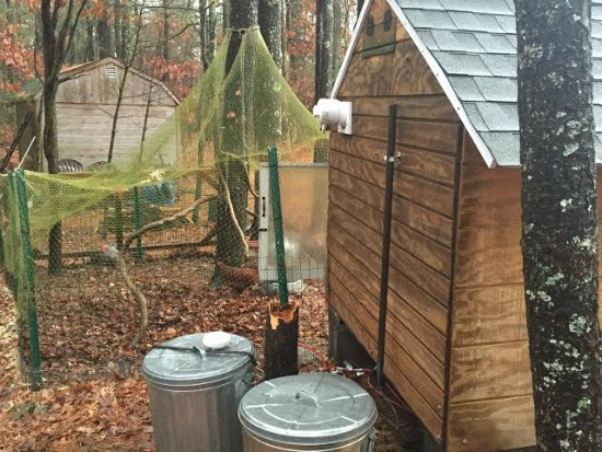 storing chicken feed in garbage cans