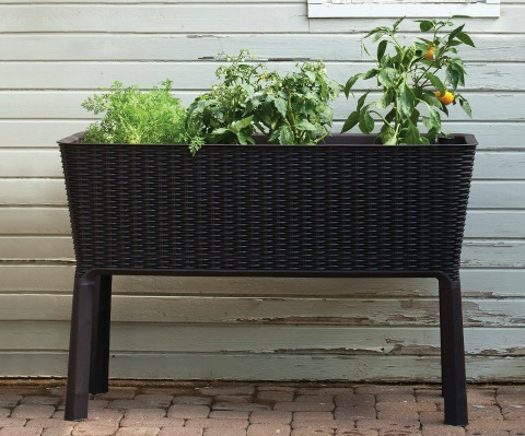 Keter Elevated Garden Bed Plant Box