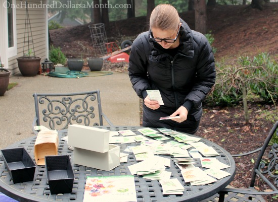 Mavis Garden Blog – Organizing Seed Packets and Waiting for Warmer Weather